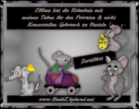 Zertifikat von Heidi