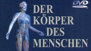 Der Körper des Menschen (2003)