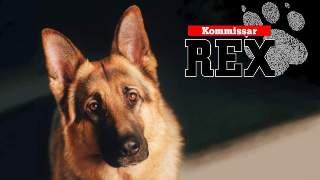 Kommissar Rex (A 1994 - 2004)