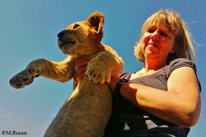 Eines der beiden Löwenkinder, die wir besuchen konnten