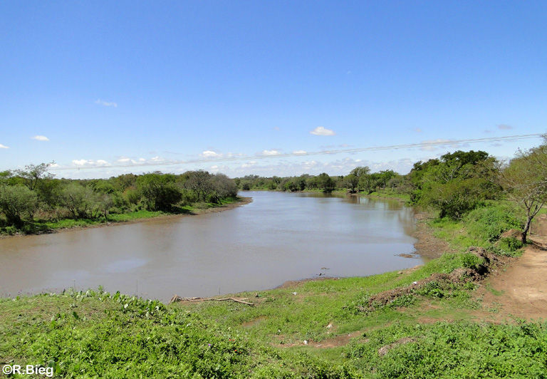 Die Landschaft zwischen Resistencia und Corrientes
