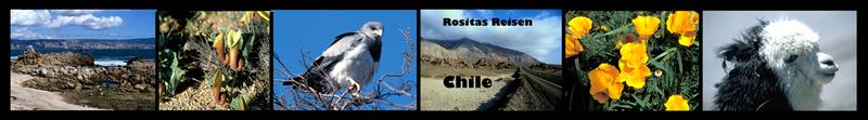 zur Chilereise