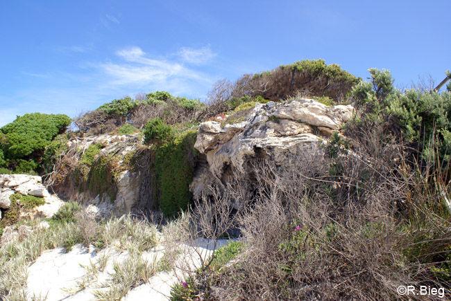 Cape Gantheaume
