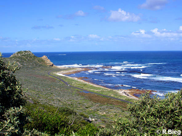 Am Cape Hope