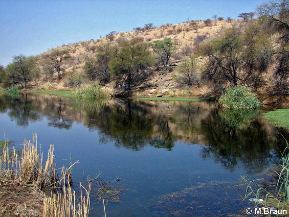 Das kleine Naturschutzgebiet liegt nahe Windhoek