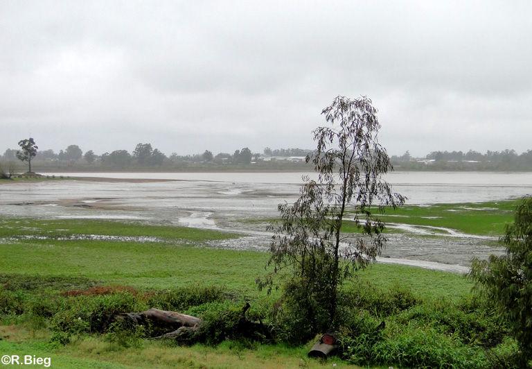 Landschaft in der Nähe der Stadt Federacion