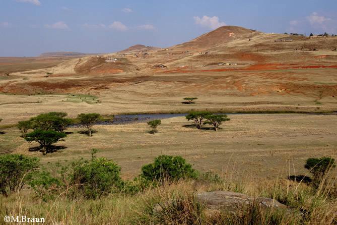 Unterwegs zu den Nördlichen Drakensbergen