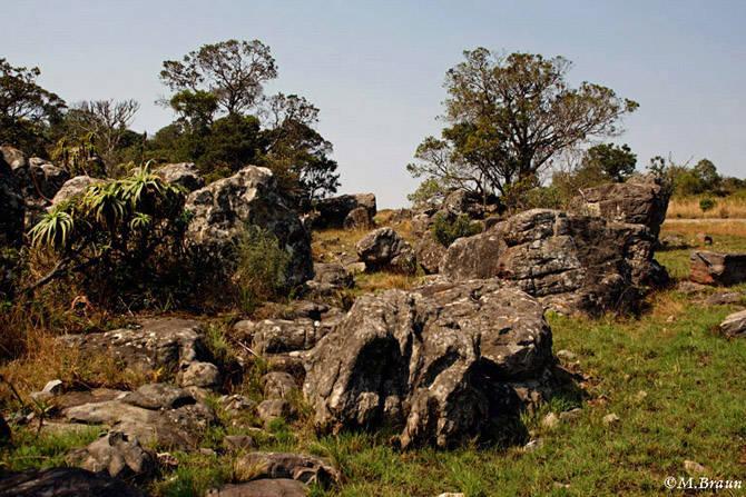 Landschaft an der Panorama Route