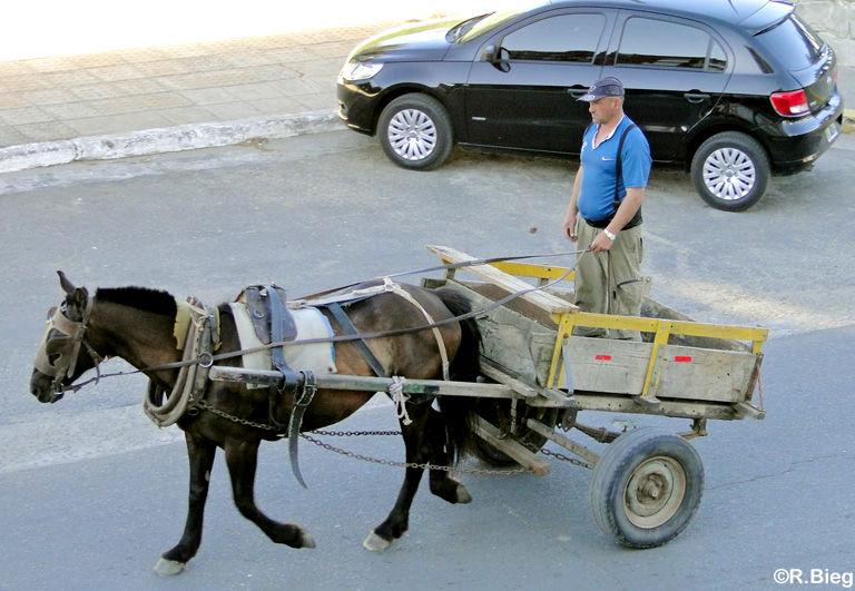 Pferdewagen sieht man in Argentinien noch häufig