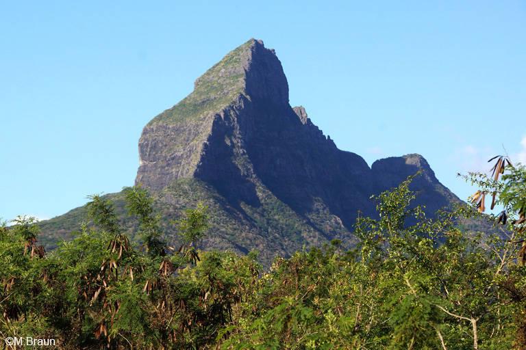 Piton de la Petite Rivière Noire, der höchste Berg der Insel