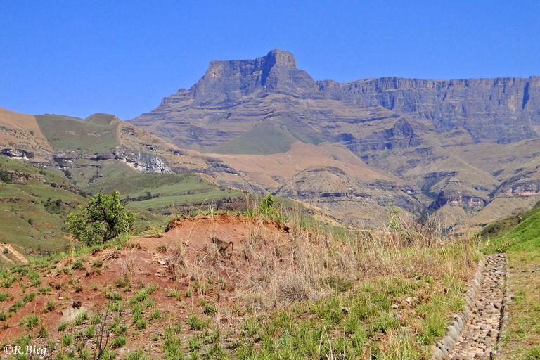 Die Bergkulisse im Royal Natal Nationalpark
