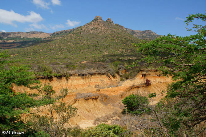 Landschaft in Ithala