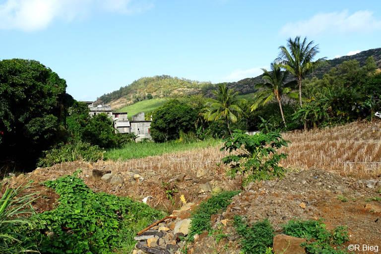 Weite Teile der Insel sind von Landwirtschaft geprägt