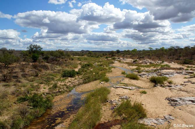 Landschaft im Süden des Krüger Parks