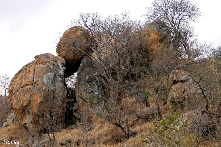 Felsenlandschaft nahe Skukuza