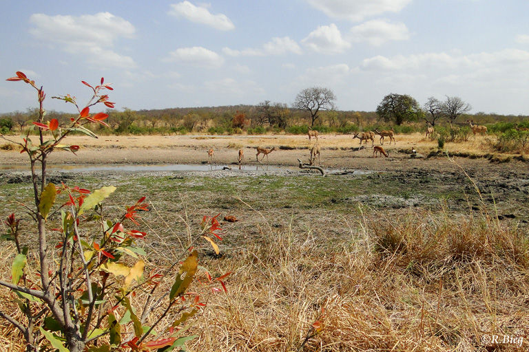 Wasserstelle an einer Nebenstrecke