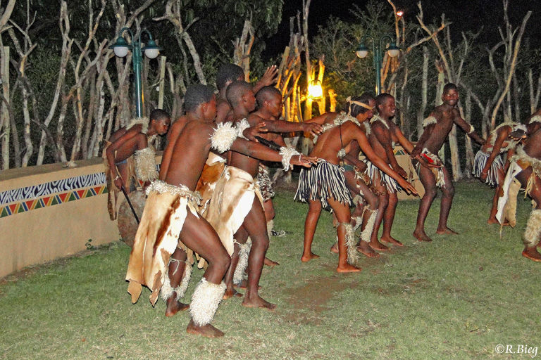 Zulu-Tänze