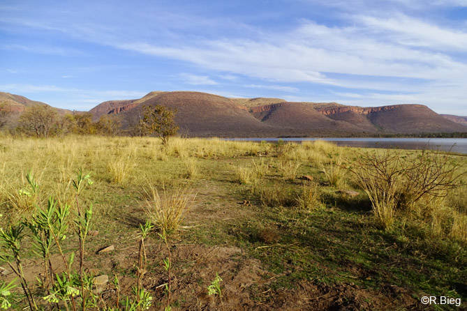 Loskop Dam Nature Reserve
