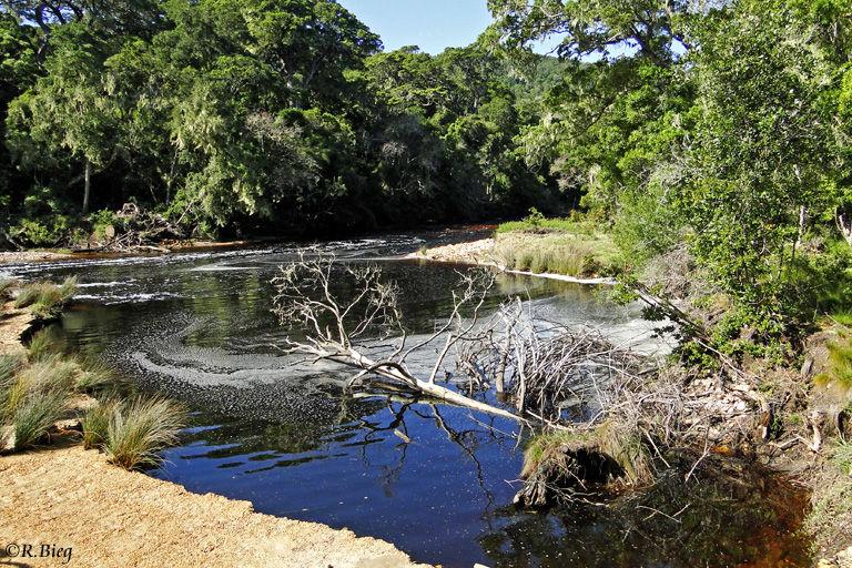 Der Groot River kurz vor seiner Mündung