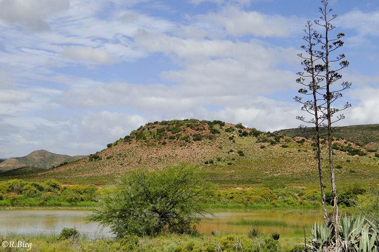 Eine kleine Oase in den Bergen der Kleinen Karoo
