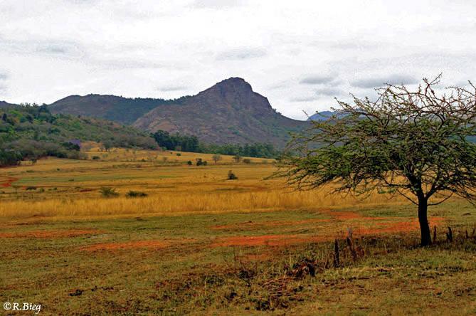 Unterwegs zum Milwane Naturreservat