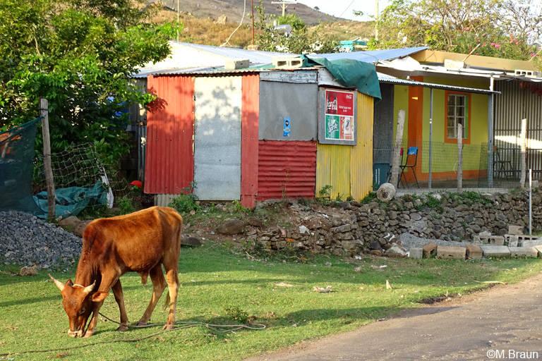 Typisches Straßenbild auf Rodrigues