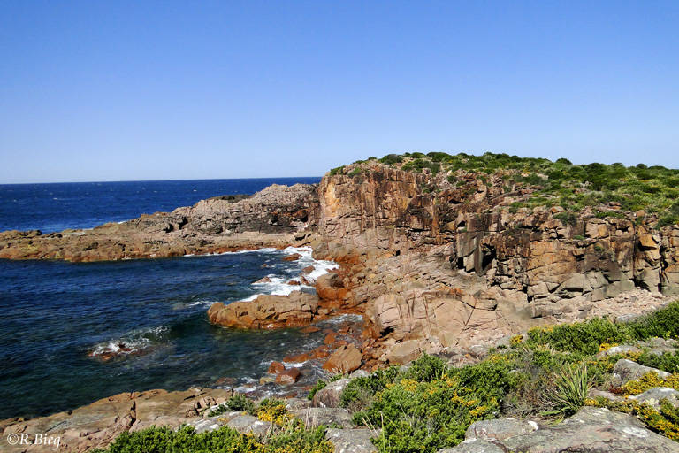 Felsenküste bei Nambucca Heads