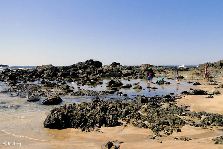 Küstenlandschaft nahe Sawtell