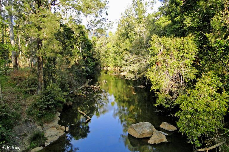 Am Broken River nahe der Unterkunft