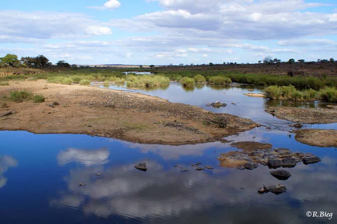 Am Sabie River