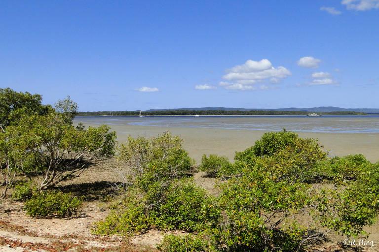 Landschaft zwischen  Hervey Bay und Rockhampton