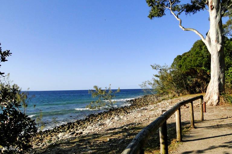 An der Küste von Rockhampton zum Eungella NP