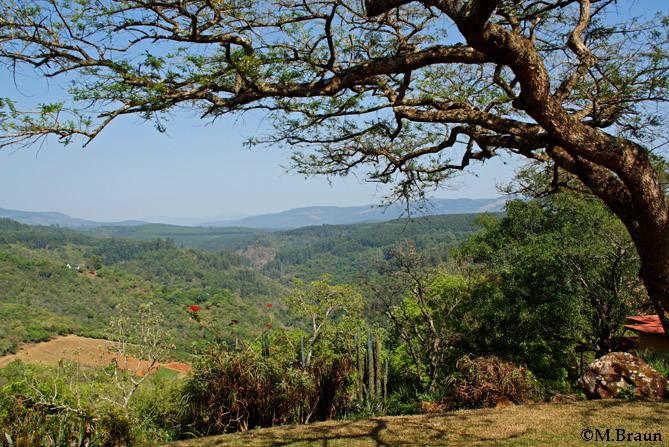 Ausblick auf die umliegenden Berge