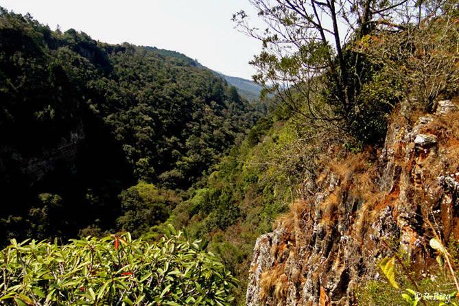 Die Bergwelt an der Panorama Route