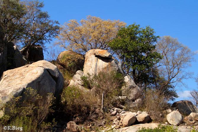 Felsenlandschaft nahe Satara