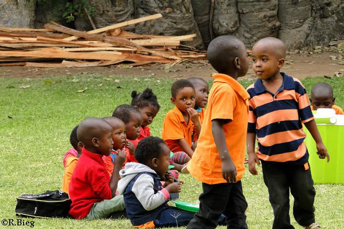 Schulausflug zum Baobab