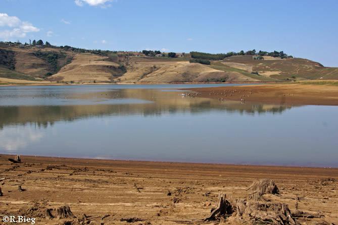 Das Reserve liegt am Rande der Drakensberge