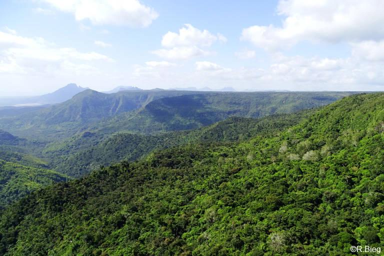 Aussichtspunkt im Nationalpark