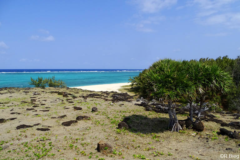 An der Ostküste von Rodrigues
