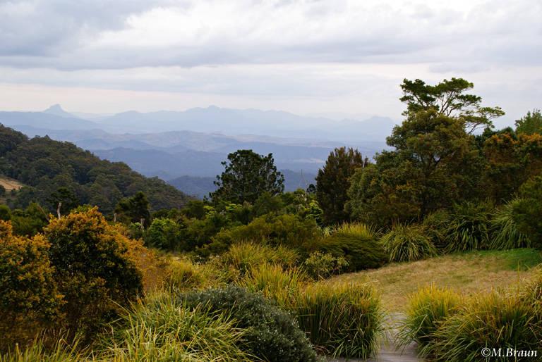 Die Berge des Lamington Nationalpark