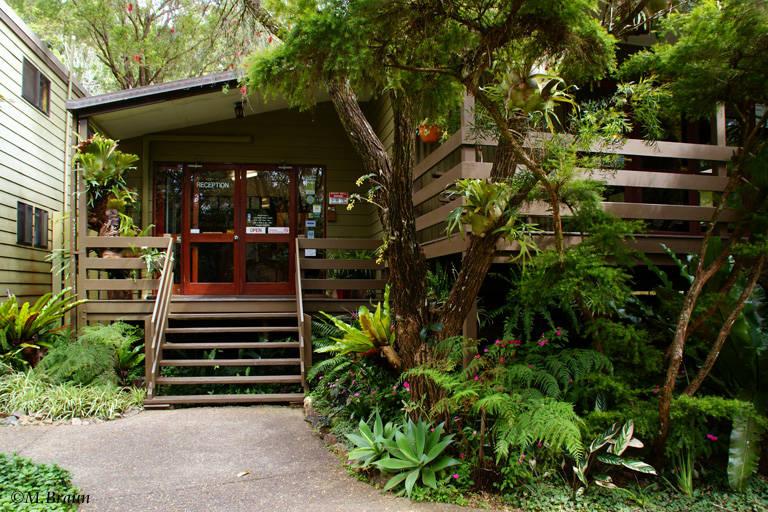 Broken River Mountain Resort im Eungella Nationalpark