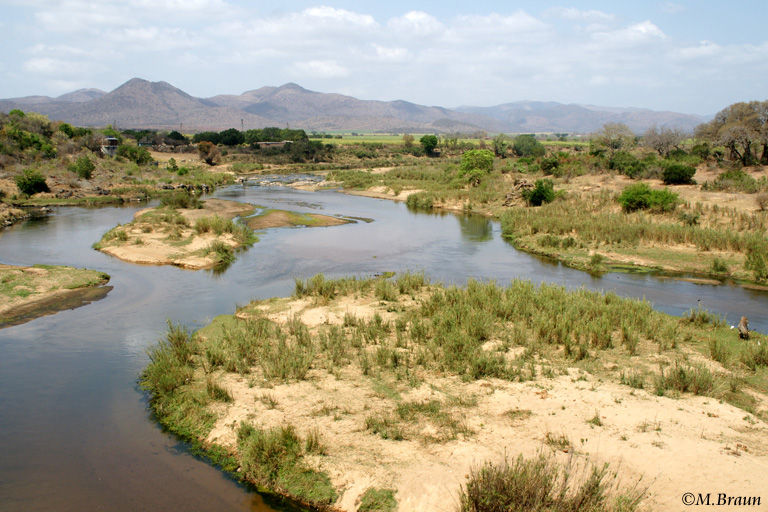 Auf der Brücke des Crocodile River unmittelbar vor dem Malelane Gate