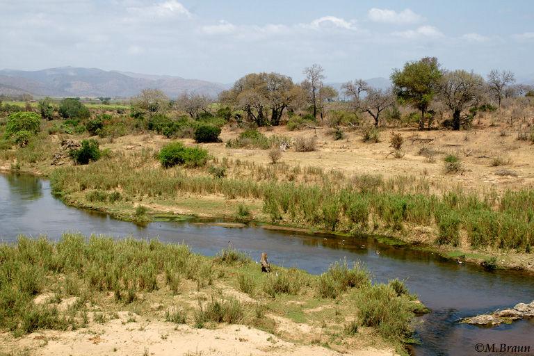 Blick auf den Crocodile River, die südliche Grenze des Nationalparks