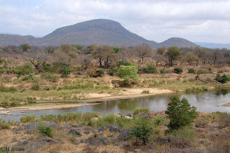 Nur die großen Flüsse führen im September noch Wasser