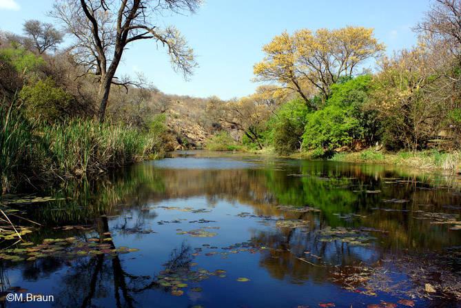 Der Blick auf den Eland-River