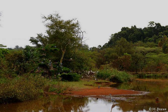 Ein kleiner See im Reservat