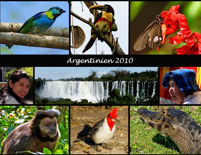 Reisebericht Arbentinien 2010 Übersicht