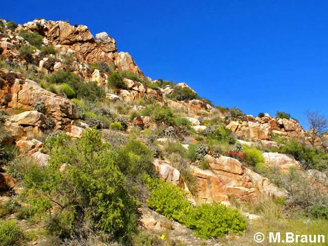Schöne Felsenlandschaft bei Montagu