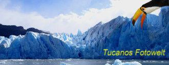 Tucanos Fotowelt