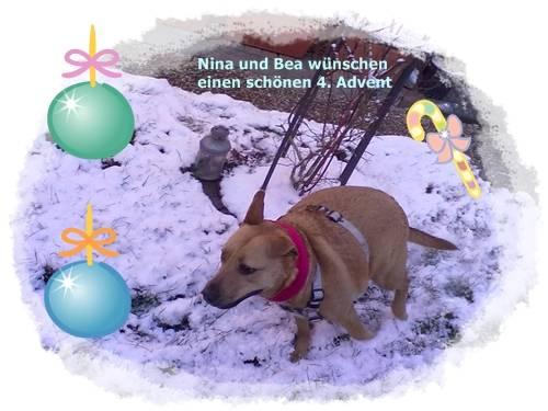 An den Beitrag angehängtes Bild: http://file1.npage.de/005670/69/bilder/bild061.jpg